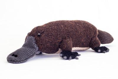 Australian Platypus