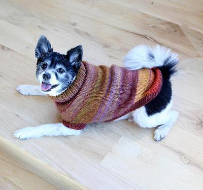 Proud Puppy Dog Sweater