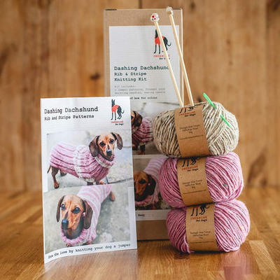 Dog Jumper Knitting Kit - Dashing Dachshund