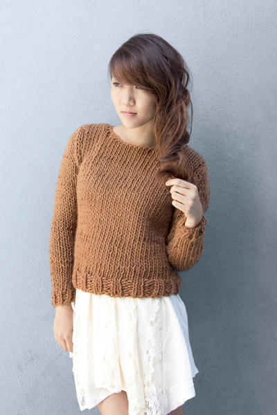Knitting Pattern for Beginners Basic Sweater