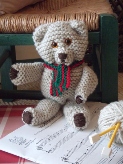 Teddy Bear Starter Knitting Kit