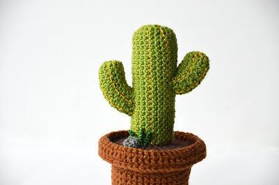 Desert Cactus Crochet Pattern - Mexican Cactus Pattern - Green Cactus