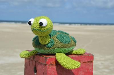Seymore the Sea Turtle